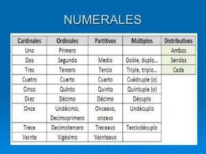 clasificacin-determinantes-y-pronombres-7-728